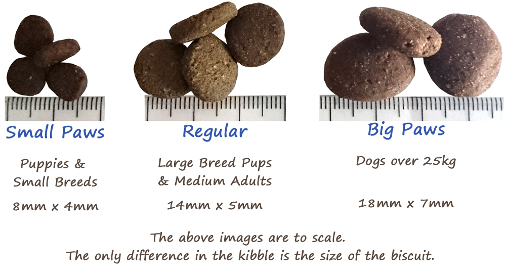 all_3_kibbles_website_copy.jpg